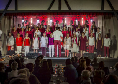 pqf-groupe-vocal-et-intrumental-galerie-concert-goe-2018-010