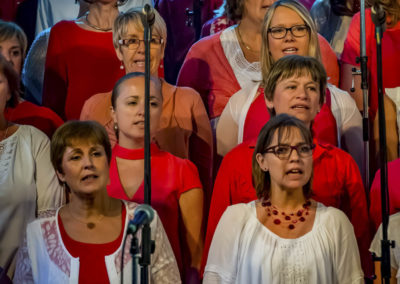 pqf-groupe-vocal-et-intrumental-galerie-concert-trooz-2018-047